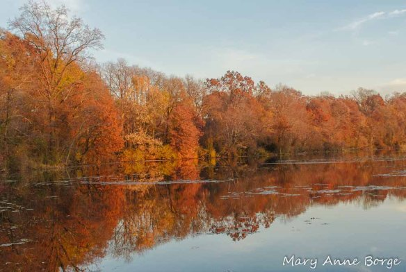 Spring Lake at Roebling Park, Abbott Marshlands, Hamilton Township, New Jersey