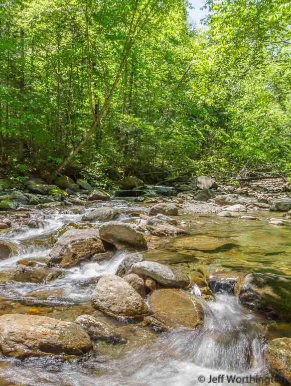 Stevenson Brook at Little River State Park